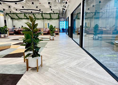 SPC Flooring for Sale